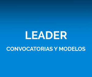 Leader Convocatorias y modelos