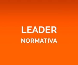 Leader Normativa